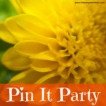 Pin It Party
